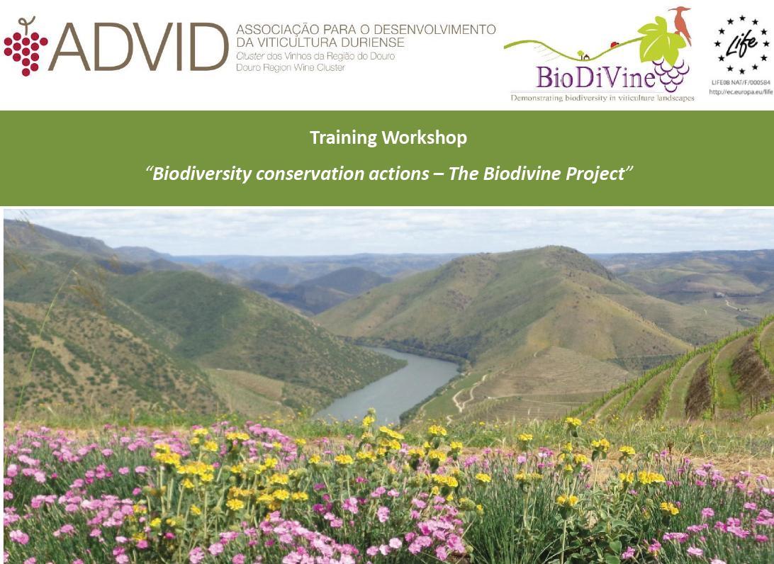 advid_biodivine