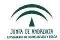 logo_CIFA_ptt