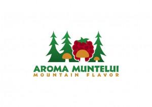 Seminar Romania 2
