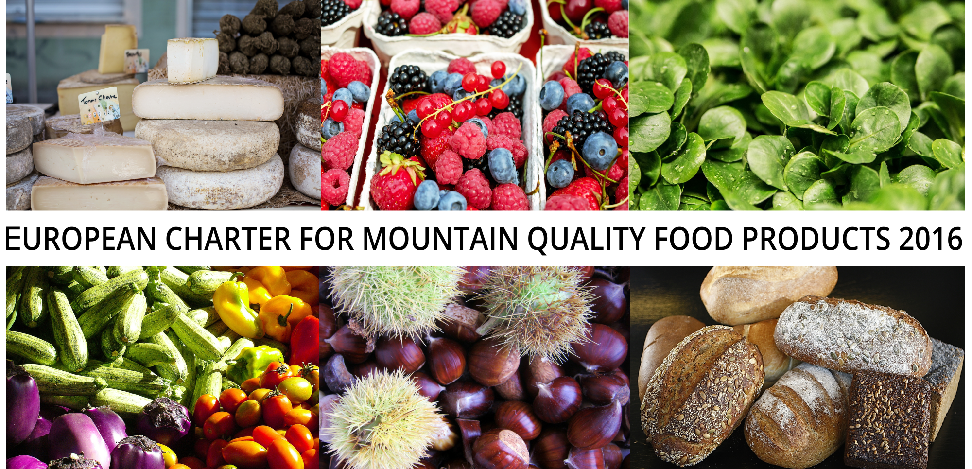 The European Charter For Mountain Quality Food Products Euromontana